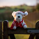 Arthur Christmas by twinnieE