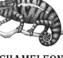 Chameleon Sticker