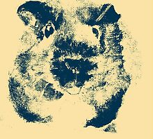 Guinea Pig Abstract Study by guineapiglove
