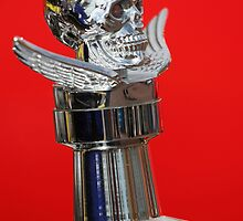 Skull and Wings Radiator Cap by vipgrafx