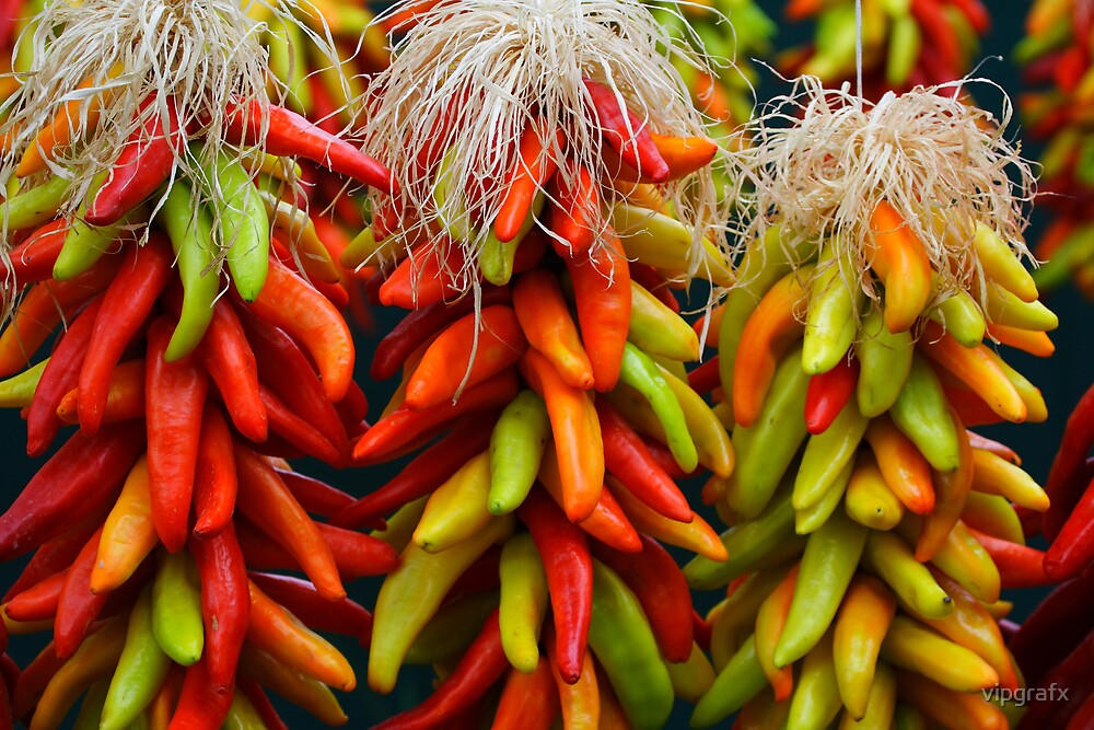 Colorful Chile Ristras by vipgrafx