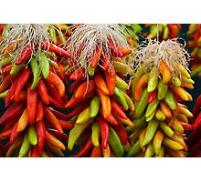 Colorful Chile Ristras Photographic Print