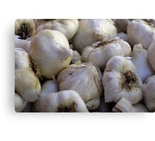 Garlic in the Raw Canvas Print