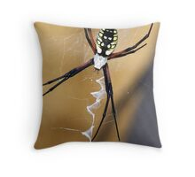 Please Dont Bite Me For Taking Your Picture Throw Pillow