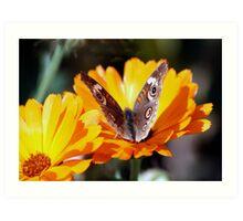 Flutterbye Art Print