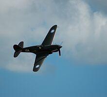 War Hawk by IanBriscoe