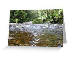 Bird River East Pillinger Tasmania Greeting Card
