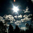 Sunlight by Chloe Garfield