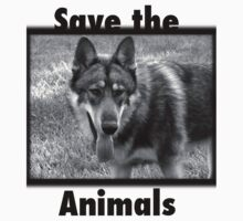 save the animals by melynda blosser