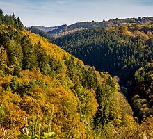 Autumn Hills by PatiDesigns