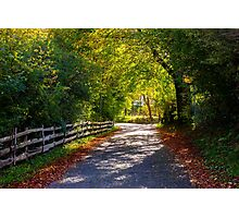 An Autumn Road Photographic Print