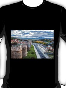 The Walls and the River T-Shirt