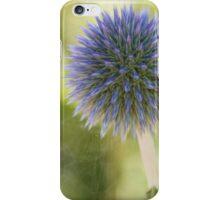 Echinops Blue iPhone Case/Skin
