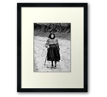 JUST PASSING Framed Print