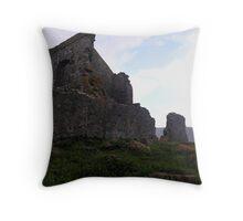 photoj-Tasmania, Stanley Throw Pillow