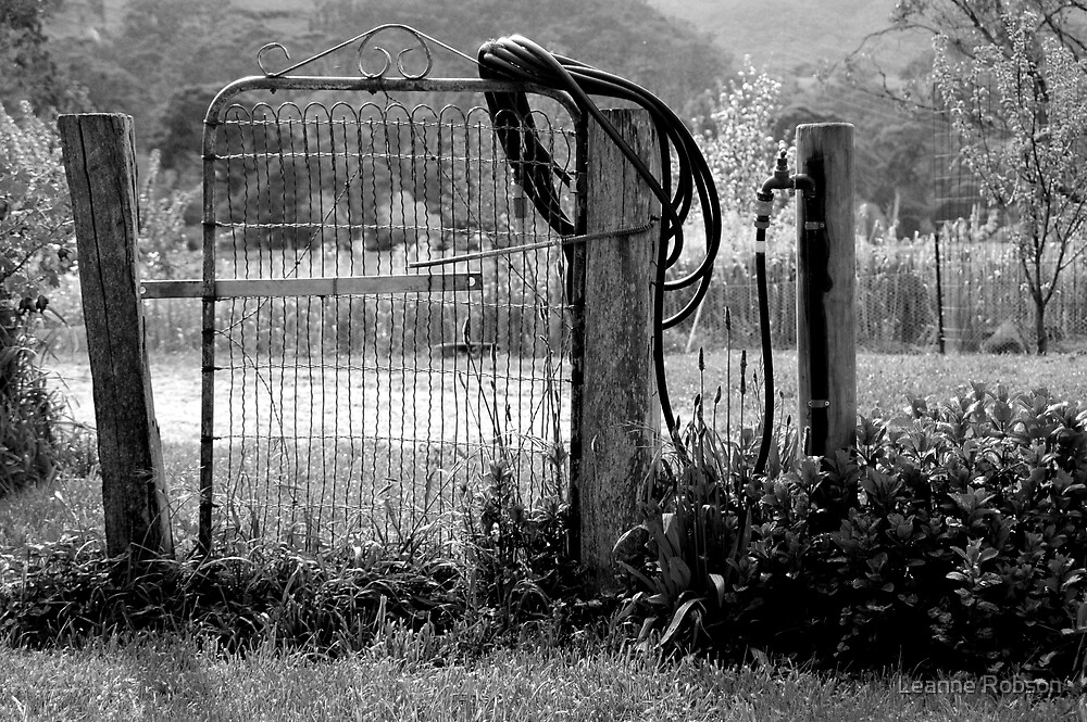 Use The Gate by Leanne Robson
