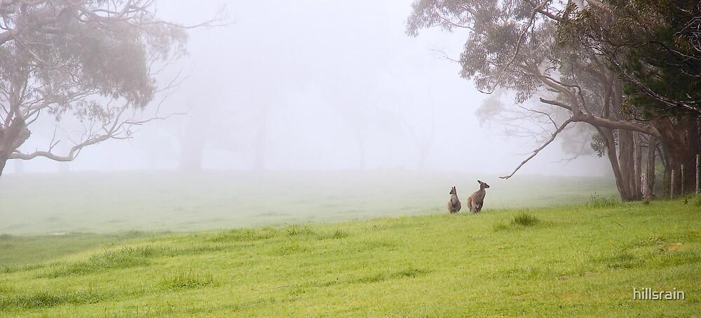 Australiana by hillsrain