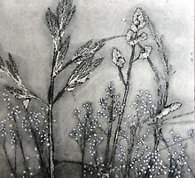 "Mornington Peninsula Grasslands 11 by Belinda ""BillyLee"" NYE (Printmaker)"