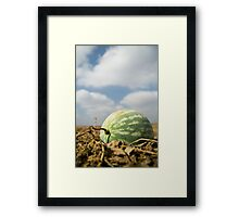 Too Close to the Sun Framed Print