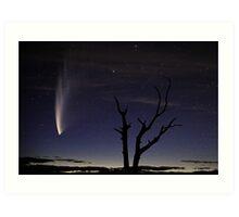 Comet McNaught Art Print