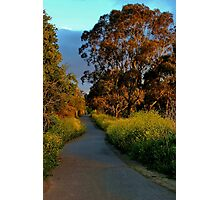 """Golden Mile"" Photographic Print"