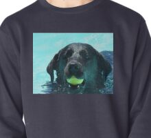 Buddy's Ball Pullover