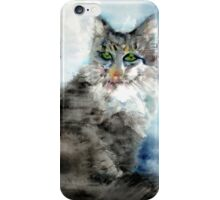 AN UNCHANGING WILL iPhone Case/Skin