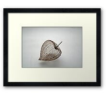The immortelle (HOME PAGE IN RB 2009 02 06) Framed Print