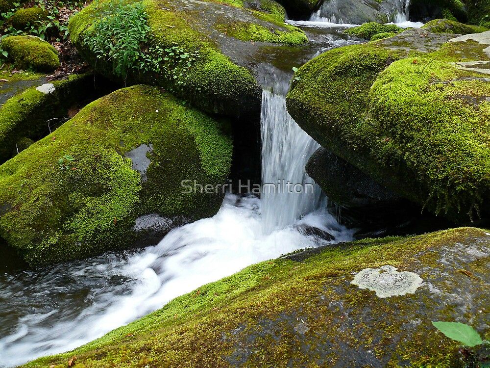 Gushing by Sherri Hamilton