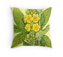 Orange Mullein - Verbascum phlomoides Throw Pillow