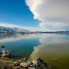 Mono Lake and Sky Scape by Barbara  Brown