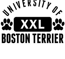 University Of Boston Terrier by kwg2200