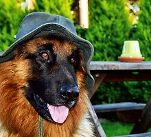 Dog in a hat by Gary Kenyon