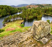 Tarn Hows View by Gary Kenyon