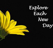 Explore Each New Day by Barry L White