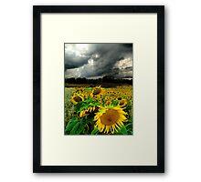 August Rains Framed Print