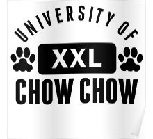 University Of Chow Chow Poster