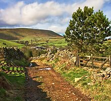 Pendle Hill by Gary Kenyon