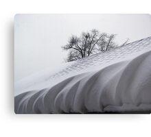 Winter Icing Metal Print