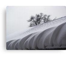 Winter Icing Canvas Print