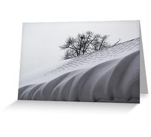 Winter Icing Greeting Card