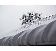 Winter Icing Photographic Print