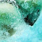 Bubbles (Polar Bear) by Jerry  Mumma