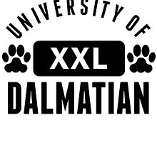 University Of Dalmatian by kwg2200