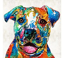 Colorful Dog Pit Bull Art - Happy - By Sharon Cummings Photographic Print