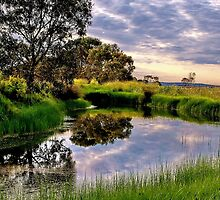 """Backwater at Hospital Swamp"" by Phil Thomson IPA"