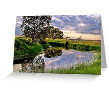 """""""Backwater at Hospital Swamp"""" Greeting Card"""
