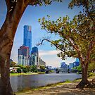 Down the Yarra by Bette Devine