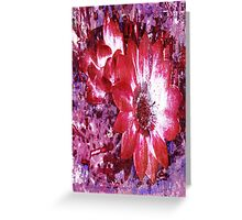 Pink Flowers 2 Greeting Card