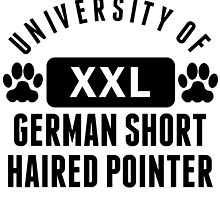 University Of German Shorthaired Pointer by kwg2200